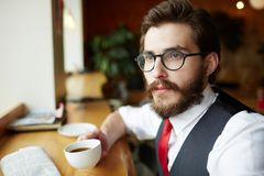 Young gentleman Royalty Free Stock Photography