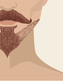 Bearded man face background Royalty Free Stock Image
