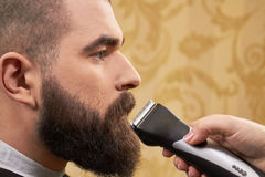 Bearded man, hand with trimmer. Customer of a barbershop. Beard care and maintenance Stock Image