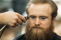 Bearded Man having a haircut with a hair clippers.  royalty free stock image