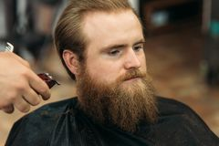 Bearded Man having a haircut with a hair clippers.  royalty free stock images