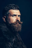 Bearded man hipster in fur coat Royalty Free Stock Photos
