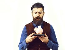 Bearded man holding notepad and moneybox with sad face. Bearded man, long beard, brutal caucasian hipster with moustache holding notepad and moneybox with sad Stock Images