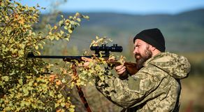 Bearded man hunter. Military uniform fashion. Army forces. Camouflage. Hunting skills and weapon equipment. How turn. Hunting into hobby. Man hunter with rifle royalty free stock photos