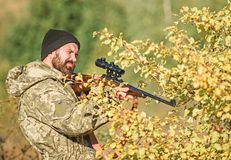 Bearded man hunter. Military uniform fashion. Army forces. Camouflage. Hunting skills and weapon equipment. How turn. Hunting into hobby. Man hunter with rifle stock photo