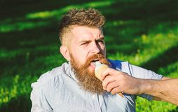 Bearded man with ice cream cone. Man with long beard eats ice cream, while sits on grass. Man with beard and mustache on. Strict face licks ice cream, grass on royalty free stock photography