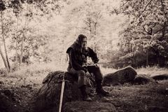 Knight in the forest. Guy in medieval costume with sword. effect of toning Royalty Free Stock Image