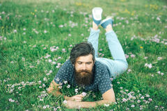Bearded man laying on green grass Stock Photo