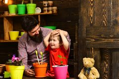 Bearded man and little boy child love nature. Family day. Greenhouse. happy gardeners with spring flowers. Flower care. Bearded men and little boy child love stock image