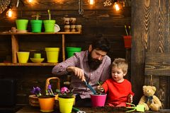 Bearded man and little boy child love nature. Flower care watering. Soil fertilizers. Father and son. Fathers day. happy royalty free stock photography