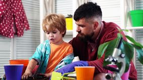 Bearded man and little boy child love nature. happy gardeners with spring flowers. Family day. Greenhouse. Father and. Son. Flower care watering. Soil stock video footage