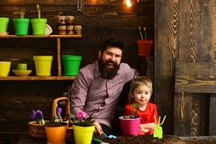 Bearded man and little boy child love nature. happy gardeners with spring flowers. Flower care watering. Soil. Bearded men and little boy child love nature royalty free stock images