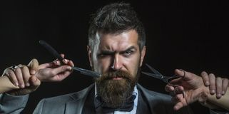 Bearded man, bearded male. Portrait beard man. Barber scissors and straight razor, barber shop. Vintage barbershop royalty free stock photography