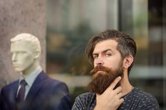 Bearded man near showcase with dummy. Handsome bearded young man hipster with long beard and mustache has stylish hair on serious hairy face standing near shop Stock Image