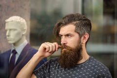 Bearded man near showcase with dummy. Handsome bearded young man hipster with long beard and mustache has stylish hair on serious hairy face standing near shop Royalty Free Stock Images