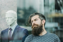 Bearded man near showcase with dummy. Handsome bearded young man hipster with long beard and mustache has stylish hair on serious hairy face standing near shop Stock Photography