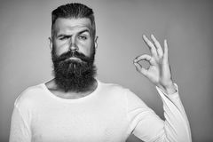 Bearded man with okey gesture. Handsome young man with long beard and moustache on face with okey gesture of finger on grey background in studio Royalty Free Stock Photography