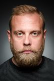 Bearded man. Portrait of serious bearded man on balck. Blond man looking straight, because he is apathetic person Stock Images