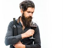 Bearded man with red wine. Handsome bearded rich man with stylish hair mustache and long beard on serious face in blue fashion shirt holding glass of red wine royalty free stock images