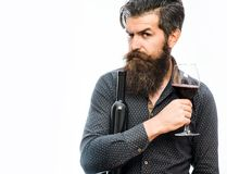 Bearded man with red wine. Handsome bearded rich man with stylish hair mustache and long beard on serious face in blue fashion shirt holding glass of red wine royalty free stock photos
