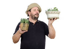 Bearded man is seller in flower shop Stock Image