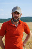 Bearded man standing in a wheat field on sunny day Royalty Free Stock Photos