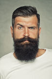 Bearded man in studio Royalty Free Stock Images