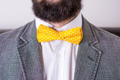 Bearded man in a suit and bow tie Stock Image