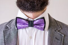 Bearded man in a suit and bow tie Royalty Free Stock Images