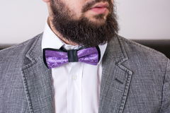 Bearded man in a suit and bow tie Stock Photos