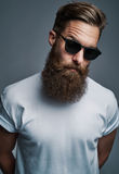 Bearded man in sunglasses with raised eyebrow Royalty Free Stock Photos