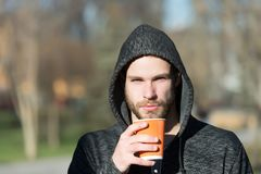 Bearded man with takeaway drink in sunny park. Macho in hood hold disposable coffee cup. Coffee or tea mood. Drink and food outdoo. R. Morning tea for breakfast Royalty Free Stock Images