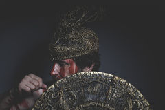Bearded man warrior with metal helmet and shield, wild Viking Royalty Free Stock Image