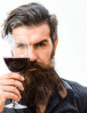 Bearded man with wine. Handsome bearded rich man with stylish hair mustache and long beard in blue fashion shirt portrait holding glass of red wine before his stock photos
