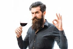 Bearded man with wine. Handsome bearded rich man with stylish hair mustache and long beard on serious face in blue fashion shirt holding glass of red wine and royalty free stock images