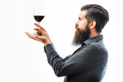 Bearded man with wine. Handsome bearded rich man with stylish hair mustache and long beard on serious face in blue fashion shirt holding glass of red wine stock photos