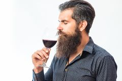 Bearded man with wine. Handsome bearded rich man with stylish hair mustache and long beard on serious face in blue fashion shirt holding glass and sniff smell of royalty free stock image
