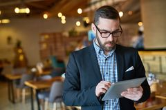 Bearded Manager Using Digital Tablet. Waist-up portrait of concentrated bearded manager in eyeglasses checking business emails on digital tablet while standing royalty free stock images