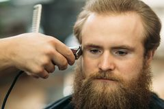 Bearded man having a haircut with a hair clippers. Closeup view with shallow depth of field stock image