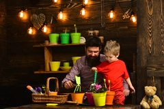 Bearded man and little boy child love nature. Flower care watering. Soil fertilizers. happy gardeners with spring. Bearded men and little boy child love nature royalty free stock photography