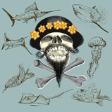 Bearded pirate skull and underwater life - hand drawn vector Stock Photography