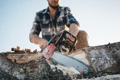 Bearded professional lumberjack wprker wearing plaid shirt using chainsaw for work on sawmill. Sawdust fly apart royalty free stock images