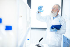 Bearded scientist holding flask with reagent and clipboard in chemical lab. Senior bearded scientist holding flask with reagent and clipboard in chemical lab Royalty Free Stock Images