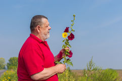 Bearded senior man forming bunch of wild flowers Stock Images