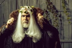 Zeus in white wig. Bearded senior man in long white wig vine crown as Zeus god in fur coat indoor on wooden background stock image