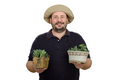 Bearded smiling seller flowers. Bearded smiling man selling green flowers in two pots Stock Image