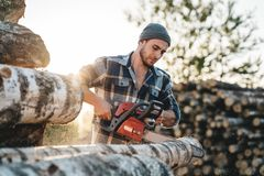 Bearded strong lumberjack wearing plaid shirt sawing tree with chainsaw for work. On sawmill royalty free stock image