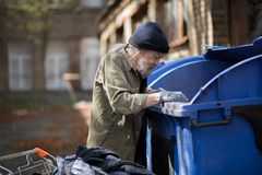 Beardy homeless man searching for empty bottles in trash can. Royalty Free Stock Photography
