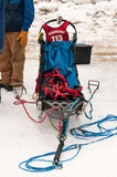 Beargrease 2015 Mid Distance Alex LaPlante's Sled at Start Royalty Free Stock Images