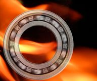 Bearing and Fire Royalty Free Stock Photos